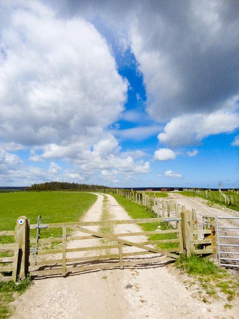 Farmland, Pike Rigg