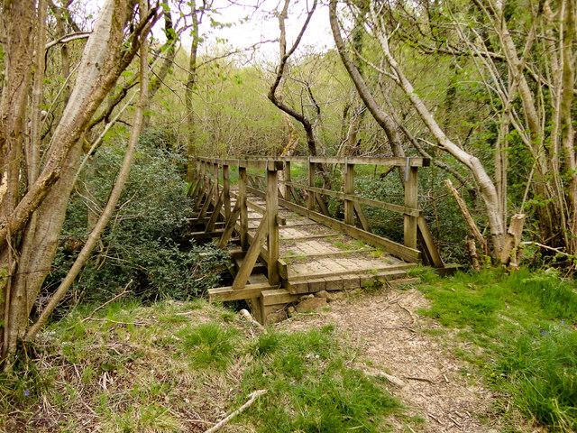 Foot Bridge over Lownorth Beck