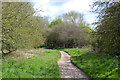 SP3779 : Blackthorn thicket by the Sowe Valley footpath near Westmorland Road, Coventry by Robin Stott