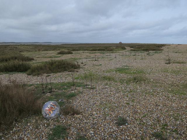 Helium balloon on Blakeney Point