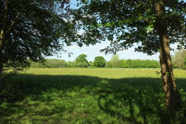 Fields near Cullompton