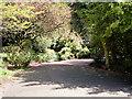 SJ8094 : Longford Park, Stretford by David Dixon