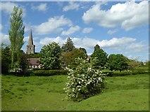 SO7937 : View to Castlemorton church by Philip Halling