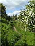 SO7937 : Earthworks at Castlemorton by Philip Halling