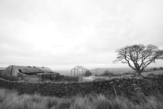 Barn and tree at Crag Top farm