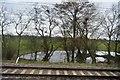 SJ6861 : Trackside pond by N Chadwick