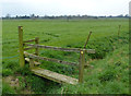 SJ4670 : Footbridge off Wildmoor Lane by Dave Dunford