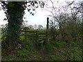 SJ4768 : Stile near Great Barrow by Dave Dunford