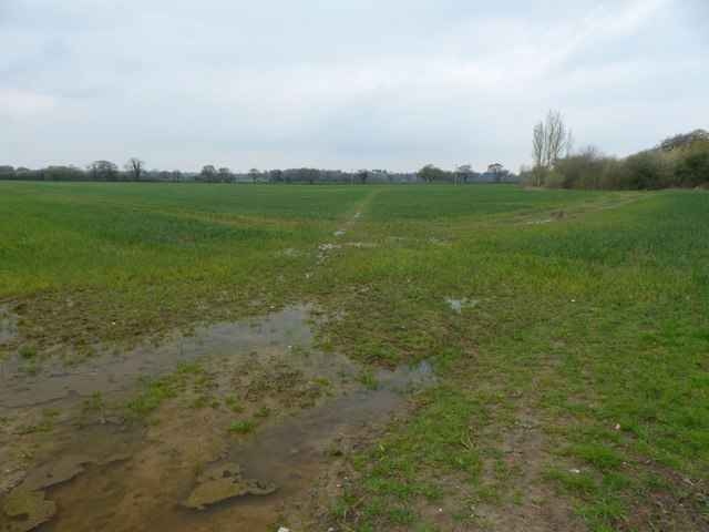 Field path near Tarvin