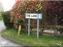 TM0758 : The Lane sign by Adrian Cable