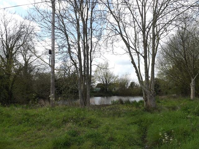 Pond off Tooks Common Lane