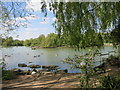 TQ4181 : The Lake in Beckton Park by Des Blenkinsopp
