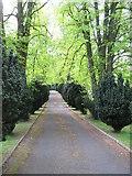 J3630 : Graveyard drive at St Colman's CoI, Newcastle by Eric Jones