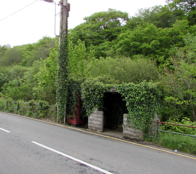 Ivy-clad phonebox and bus shelter, Ystradgynlais