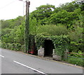 SN7810 : Ivy-clad phonebox and bus shelter, Ystradgynlais by Jaggery