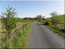 H5574 : Merchantstown Road, Merchantstown Glebe by Kenneth  Allen