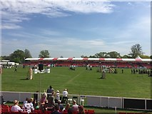 ST8083 : Badminton Horse Trials 2016: showjumping arena by Jonathan Hutchins
