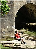 SK1695 : Taking a break by the old bridge by Neil Theasby