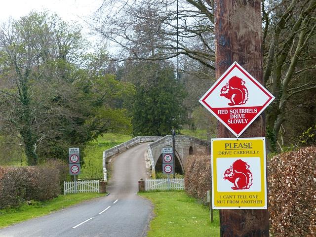Warning signs, Fowberry Bridge, Northumberland