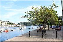 SX8751 : Dartmouth, Dart Harbour (5) by Chris' Buet