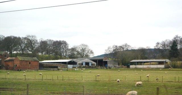 Madeley Park Farm