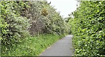 J3479 : Path, Greencastle, Belfast (May 2016) by Albert Bridge