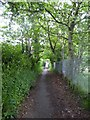 SJ7955 : Alsager: public footpath between Lodge Road and Hassall Road by Jonathan Hutchins