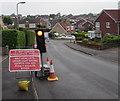 ST3090 : Wait here until green light shows, Laurel Crescent, Malpas, Newport by Jaggery