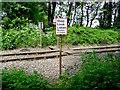 SK4015 : Footpath level crossing at Sinope by Ian Calderwood