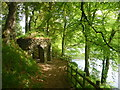 NO0042 : Rural Perthshire : Grotto, Dunkeld House Estate by Richard West