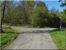 NS5379 : The John Muir Way near Carbeth Huts by Lairich Rig