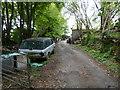 SX2971 : Driveway to Ashlake by James Emmans