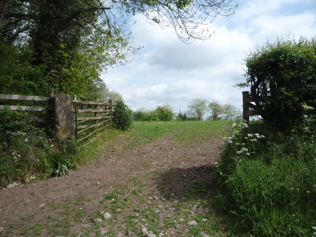 Field entrance near Braelees Cottage