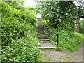 SJ8154 : Merelake Way: steps up to footbridge by Jonathan Hutchins