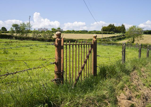 BWC gate near Carryduff