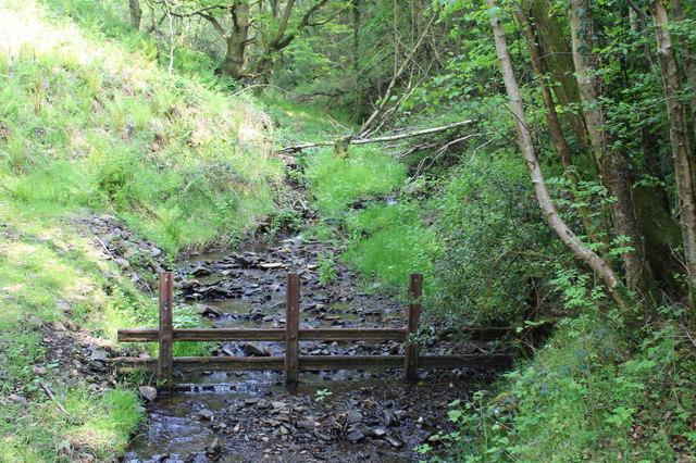 Woodland stream next to Sirhowy Valley Walk