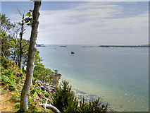 SZ0287 : Clifftop View Towards the Mouth of Poole Harbour by David Dixon