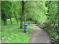 SP0394 : South lake path again-Red House Park, Great Barr, Sandwell by Martin Richard Phelan