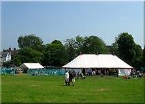 TQ1711 : Cuthman's Field, Steyning by Simon Carey