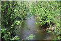 SO1700 : River Sirhowy, Coed Argoed by M J Roscoe
