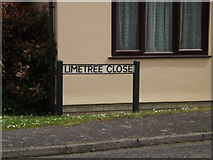 TM0954 : Limetree Close sign by Adrian Cable