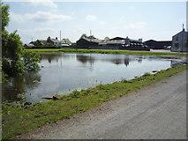 NY1853 : Pond, Salt Coates by JThomas