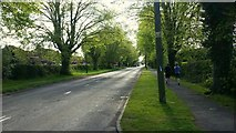 SO4841 : King's Acre Road, looking east by Jonathan Billinger