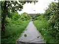 TA1132 : Sutton  Road  bridge  over  Trans  Pennine  Trail by Martin Dawes
