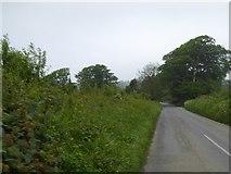 SX5756 : Ledgate Lane approaching Sparkwell Bridge by David Smith