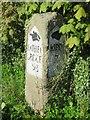 SE2860 : Old  Milestone  at  Ripley by Martin Dawes
