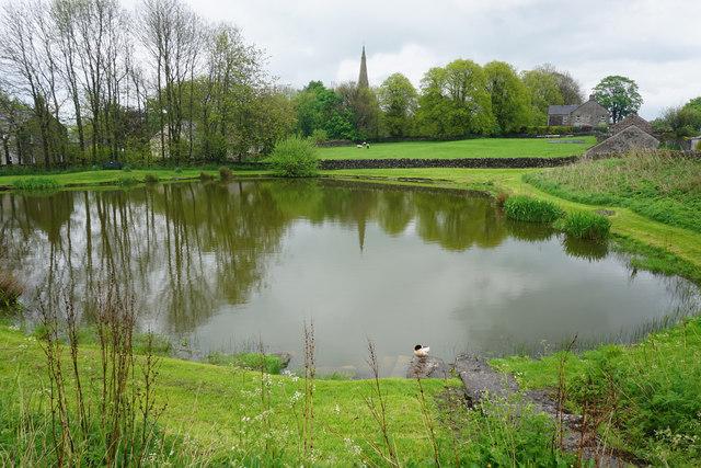 Duckpond in Monyash