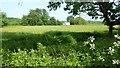 SO8647 : Normoor Common by Philip Halling