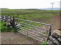 NG2361 : Over a gate in Waternish by Richard Dorrell