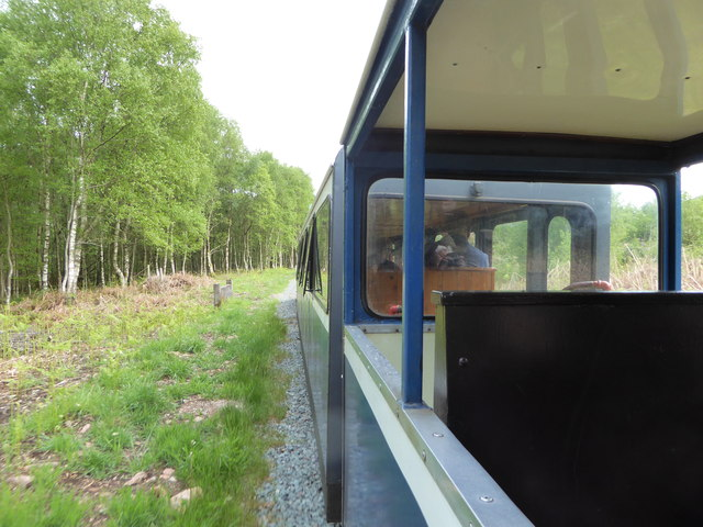 Woodland by the Ravenglass and Eskdale Railway